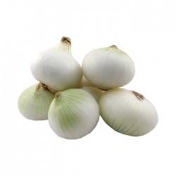Cebolla Blanca Por Kilo
